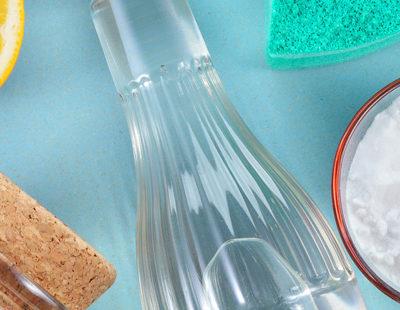 Sanitize & Sterilize