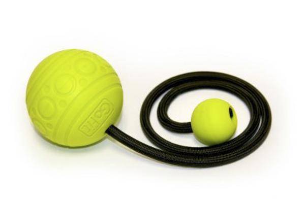GoFit-Ball